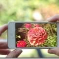 5人に1人が利用する無音カメラアプリの中で無料でおすすめの3アプリ